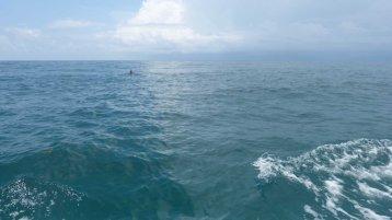 Indian ocean blue as ...