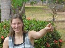 In de tuin in Kilifi