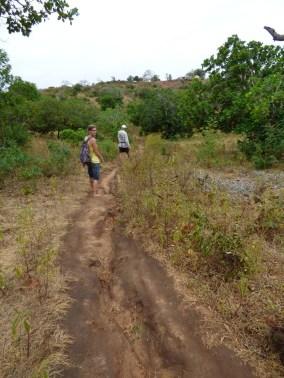 Shortcut naar de weg