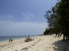 Kuruwitu Beach