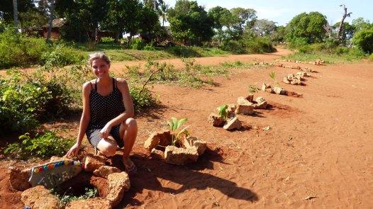 22 bomen geplant